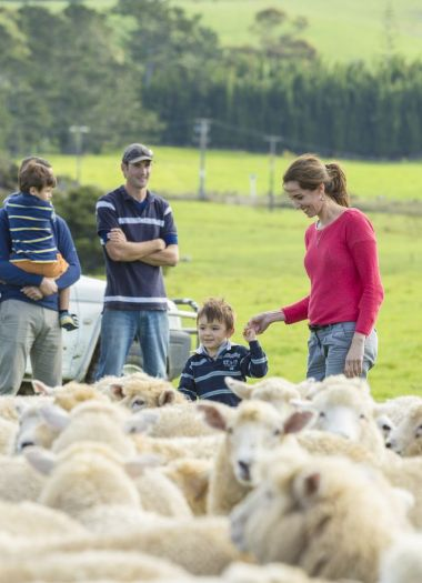 Farm Tours New Zealand | Kauri Cliffs
